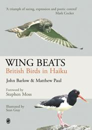 wing_beats_thumbnail